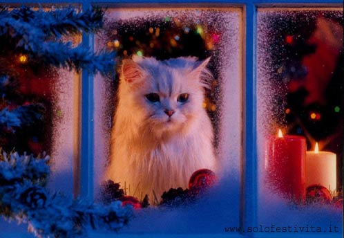 Immagine carina di Natale